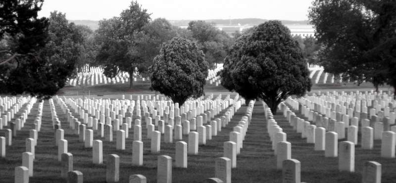 War...a Differnt Perspective